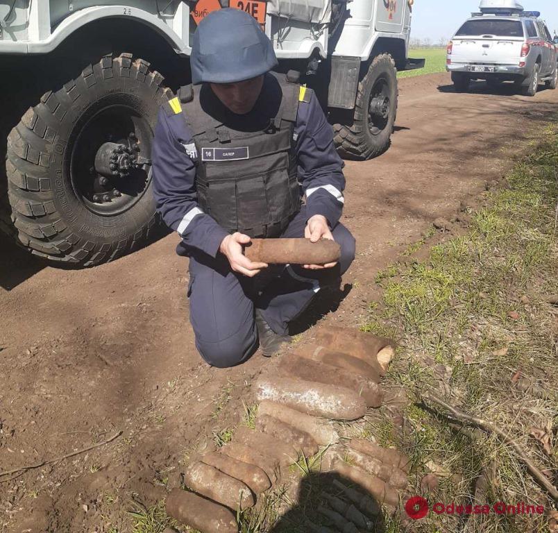 Житель Одесской области нашел у себя на огороде боеприпасы времен Второй мировой