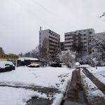 photo_2020-03-24_19-46-16 (3)