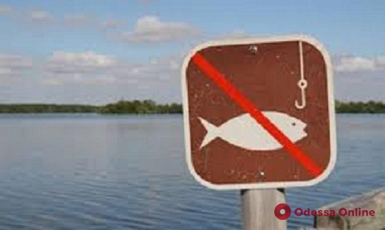 С 1 апреля в большинстве водоемов Одесской области запрещается ловить рыбу