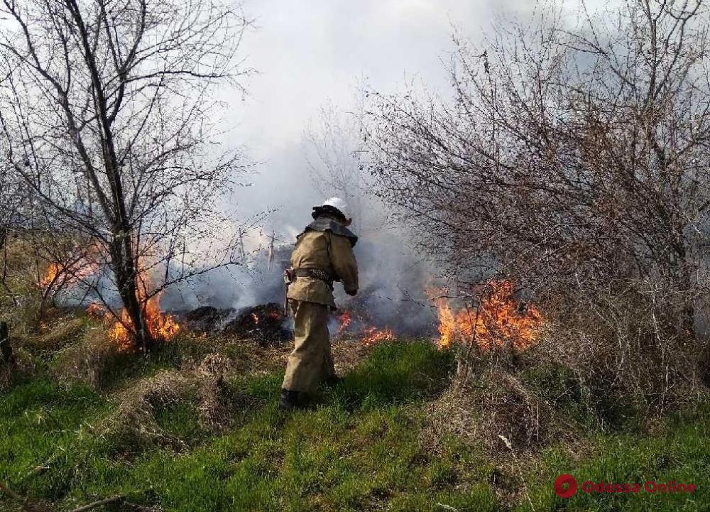 В Затоке тушат масштабный пожар (обновлено)