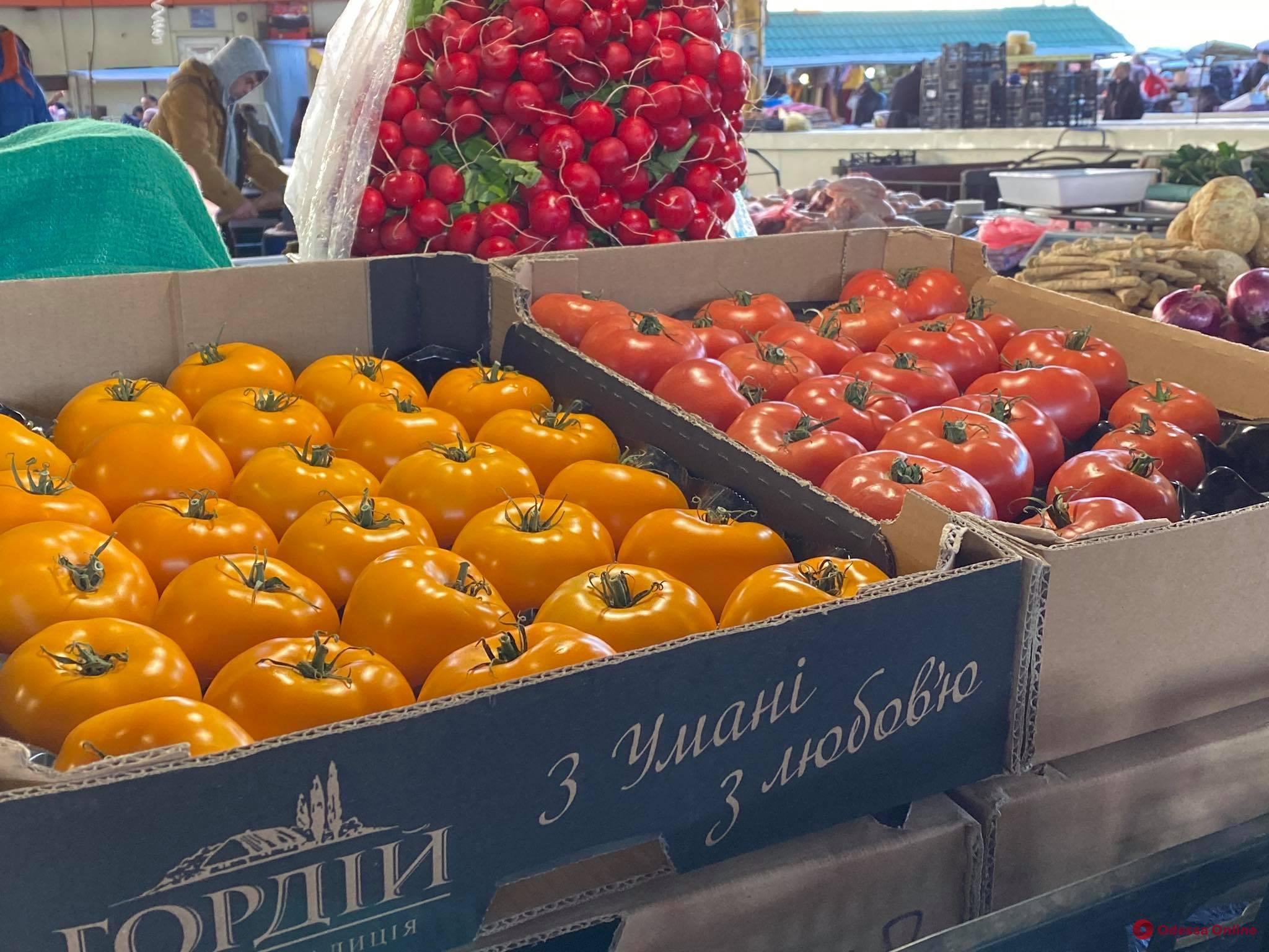 Кабмин поддержал открытие продовольственных рынков