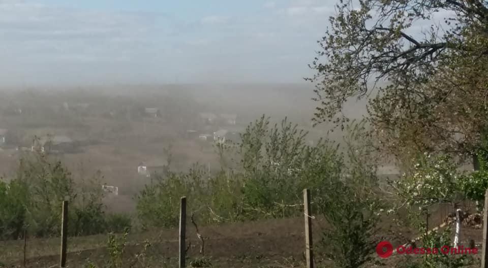На севере Одесской области бушует пыльная буря (фото, видео)