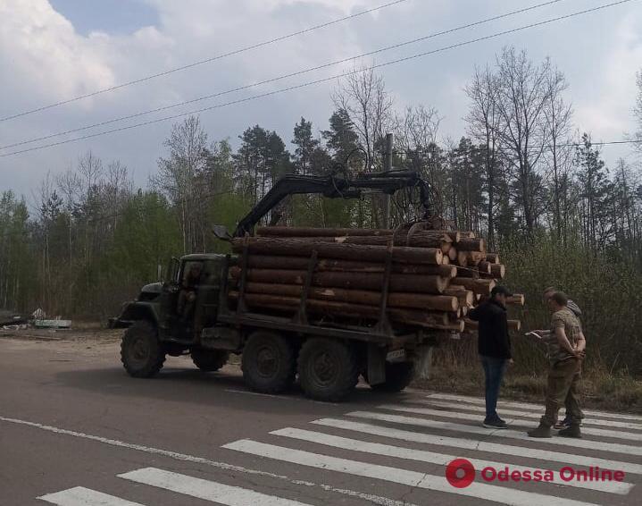 На Житомирщине одесские нацгвардейцы задержали лесоруба-нарушителя
