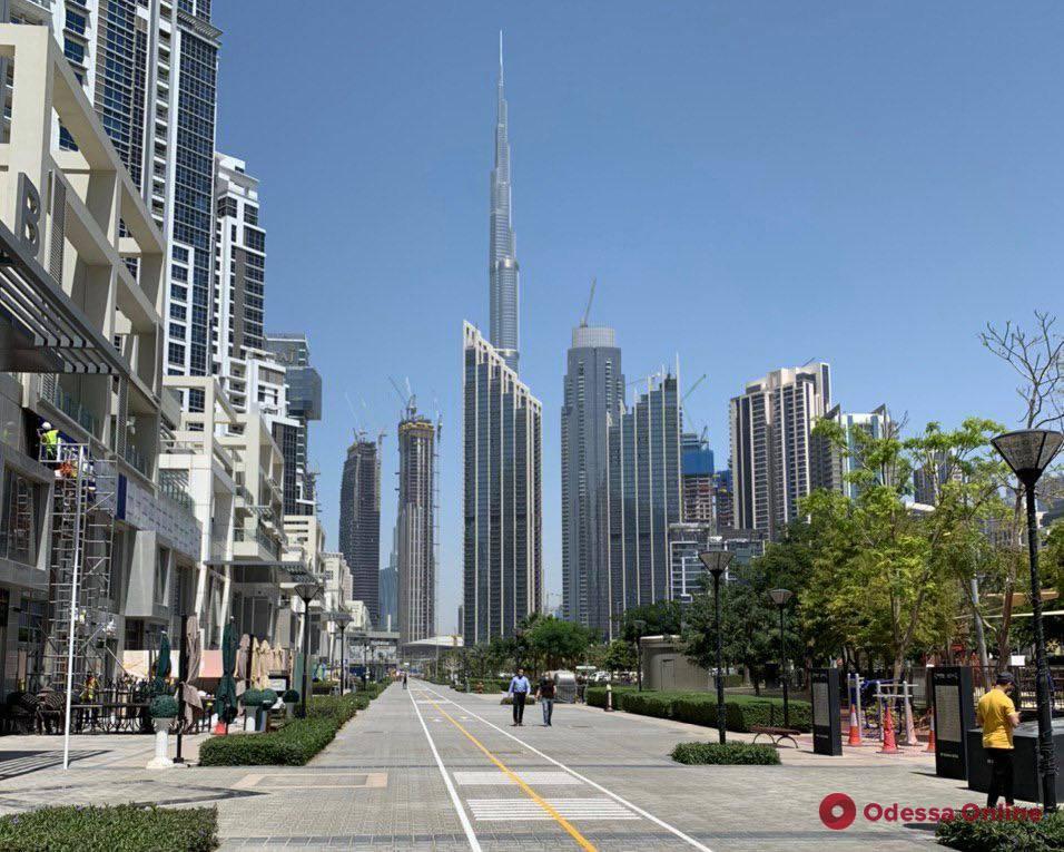 Карантин в Дубае: комендантский час, дезинфекция улиц, «мода» на прогулки с собаками и напоминания по телефону
