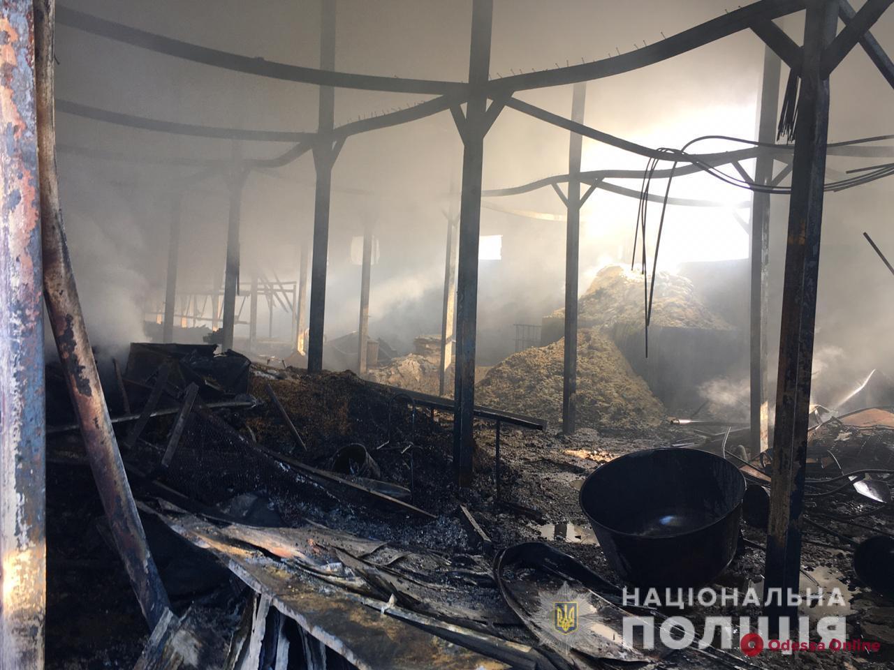 Пожар в Свято-Успенском монастыре: полиция ведет расследование по факту поджога