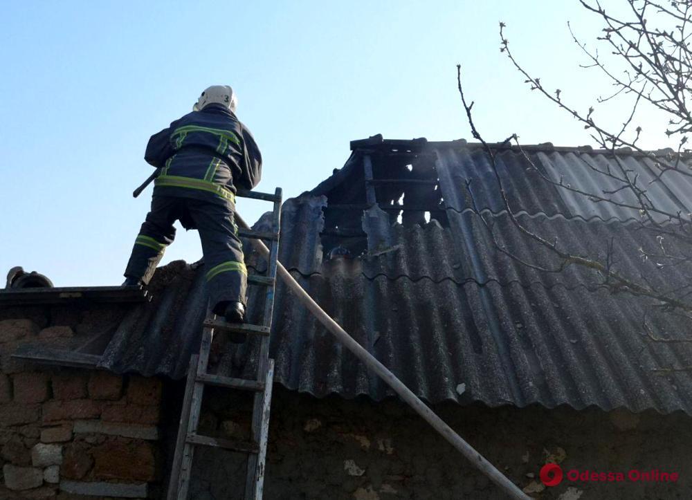 У жителя Одесской области сгорел сарай с животными