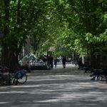 photo_2020-04-24_21-02-57 (2)