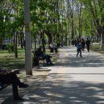 photo_2020-04-24_21-31-00 (3)