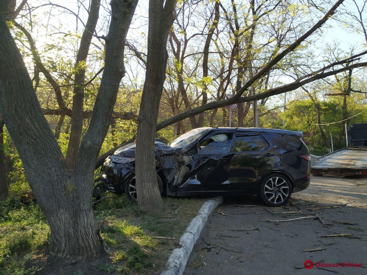 В Одессе возле «Глечика» внедорожник врезался в дерево (фото)