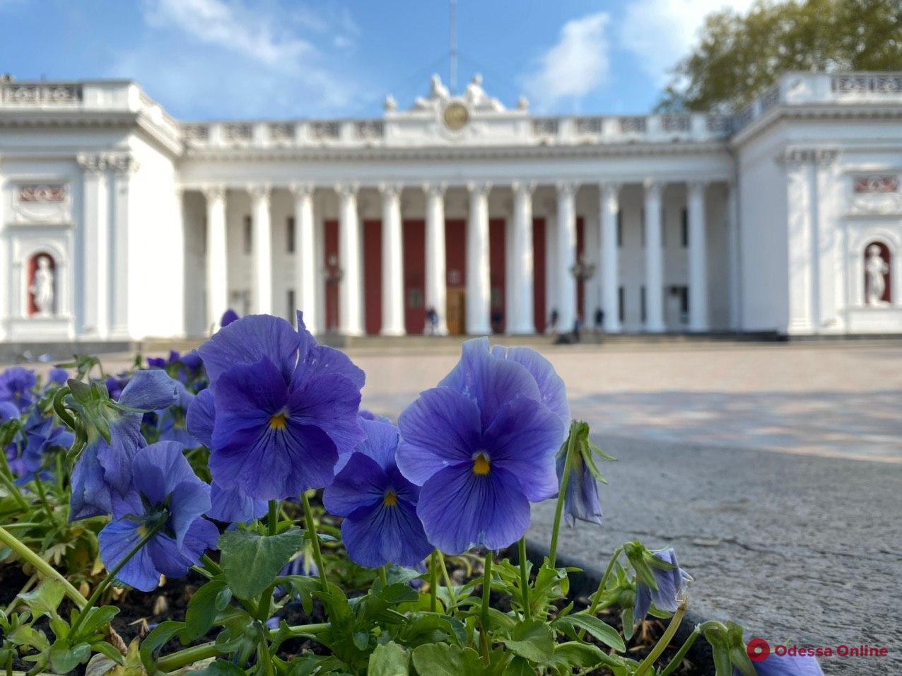 В Одессе сократили расходы на ремонт и реставрацию зданий в исторической части города
