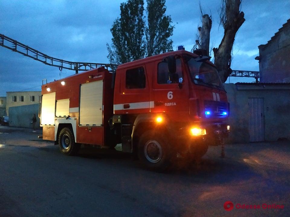 В Одессе горел приют для животных «Ковчег»