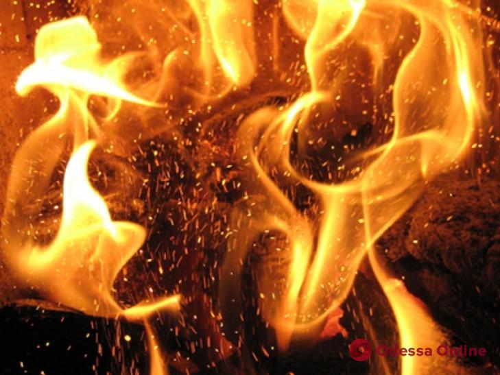 В Одесской области горел частный дом — пострадала женщина