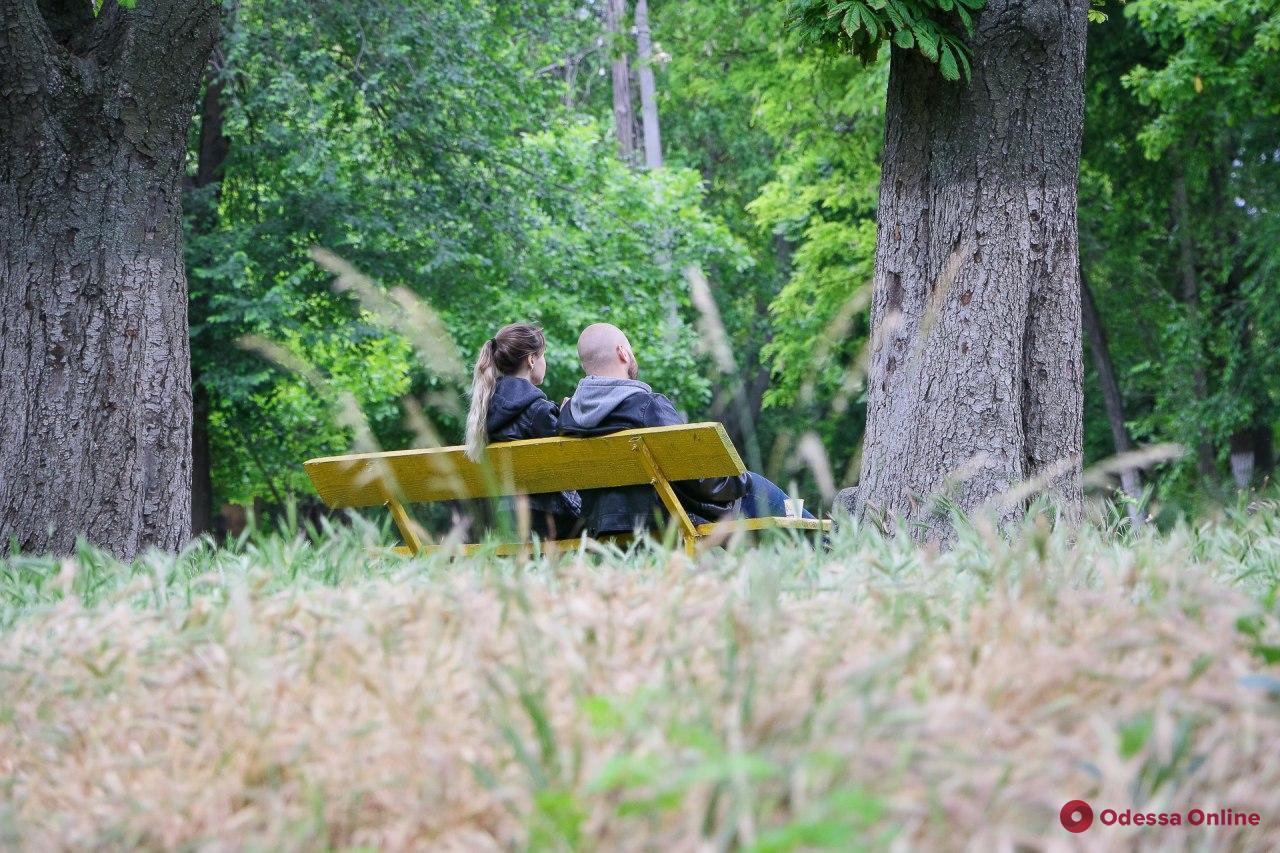 Будний день в Дюковском саду (фоторепортаж)