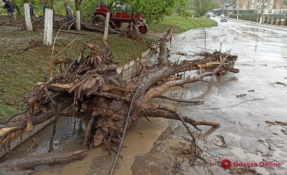 Непогода на юге Одесской области: подтопленные дома и поваленные деревья
