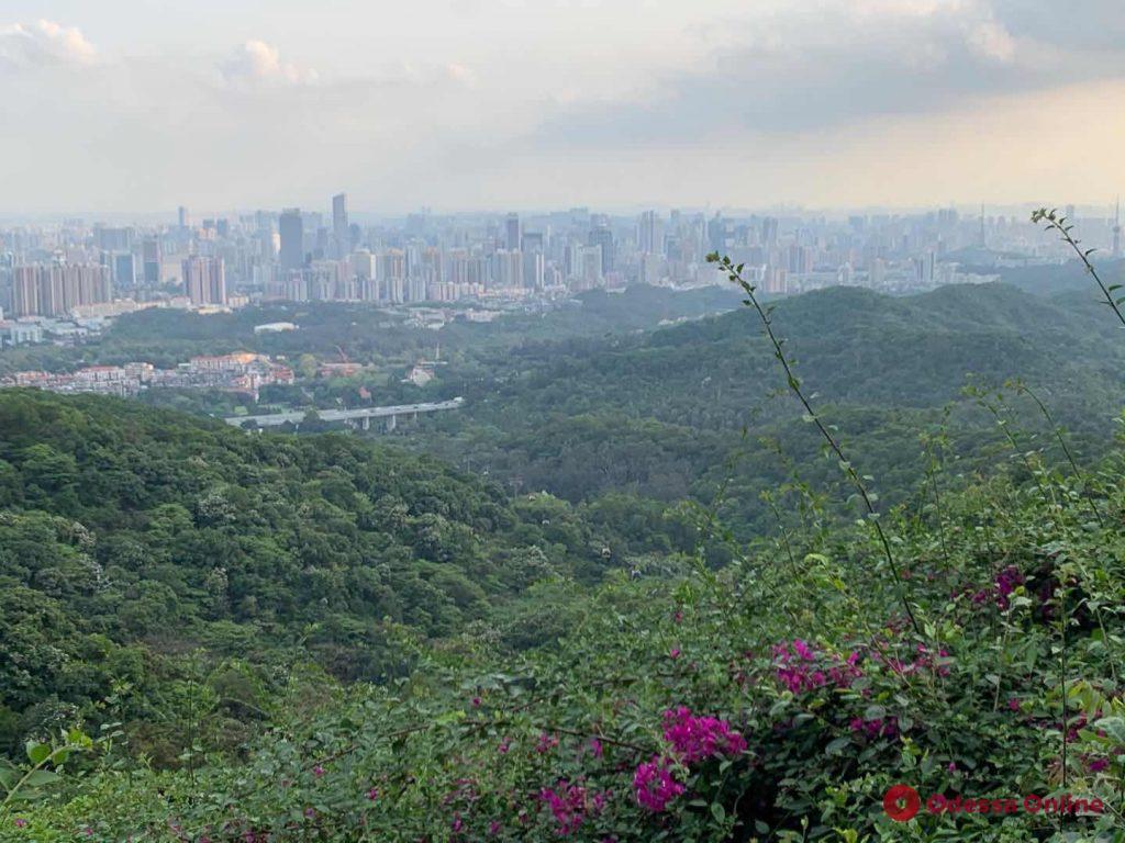 Китай сегодня: выходные в Гуанчжоу (фото, видео)