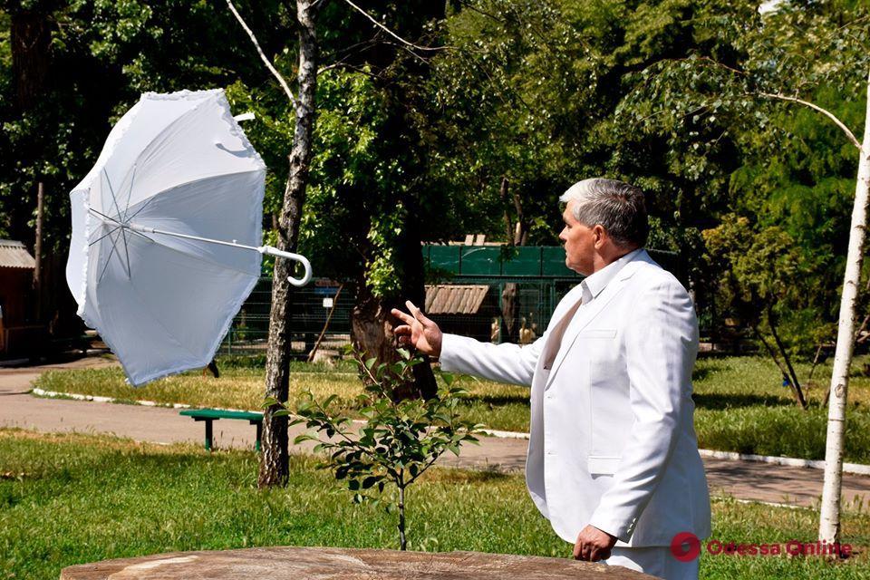 В Одесском зоопарке сняли романтический «Весенний клип» (фото и видео)