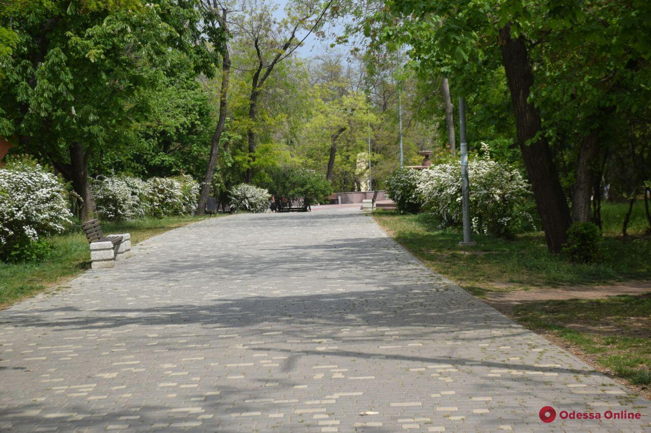«Одесса в онлайне» для тех, кто дома: прогулка по парку Шевченко