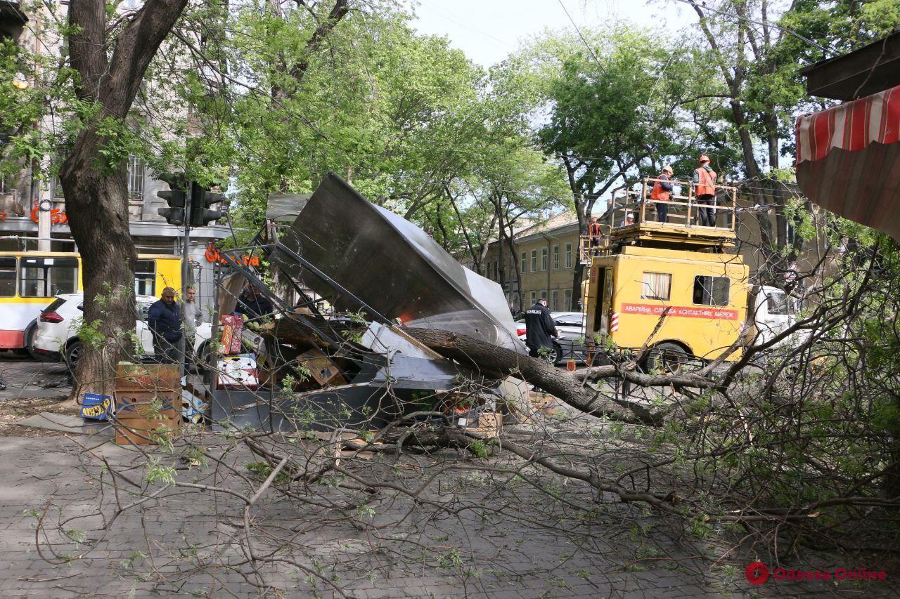 В центре Одессы упавшая ветка раздавила овощной ларек (фото)