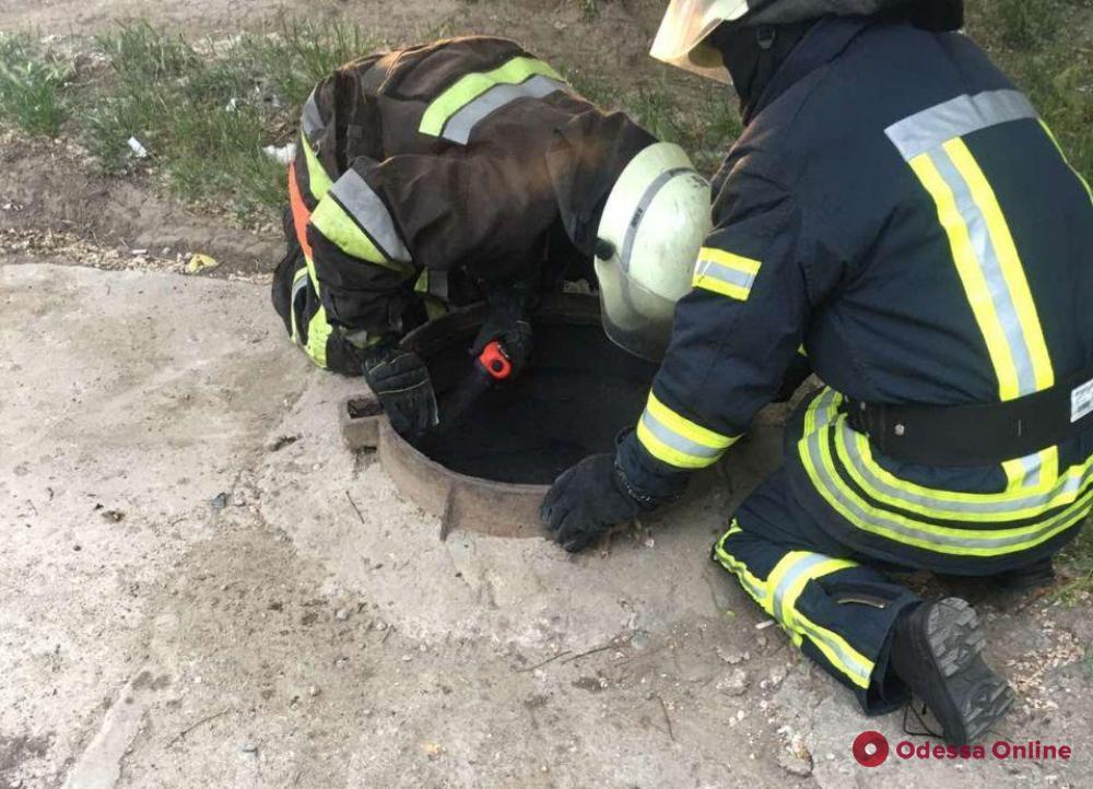 На Таирова пожарные ликвидировали возгорание в люке теплосети и спасли бездомную (фото)
