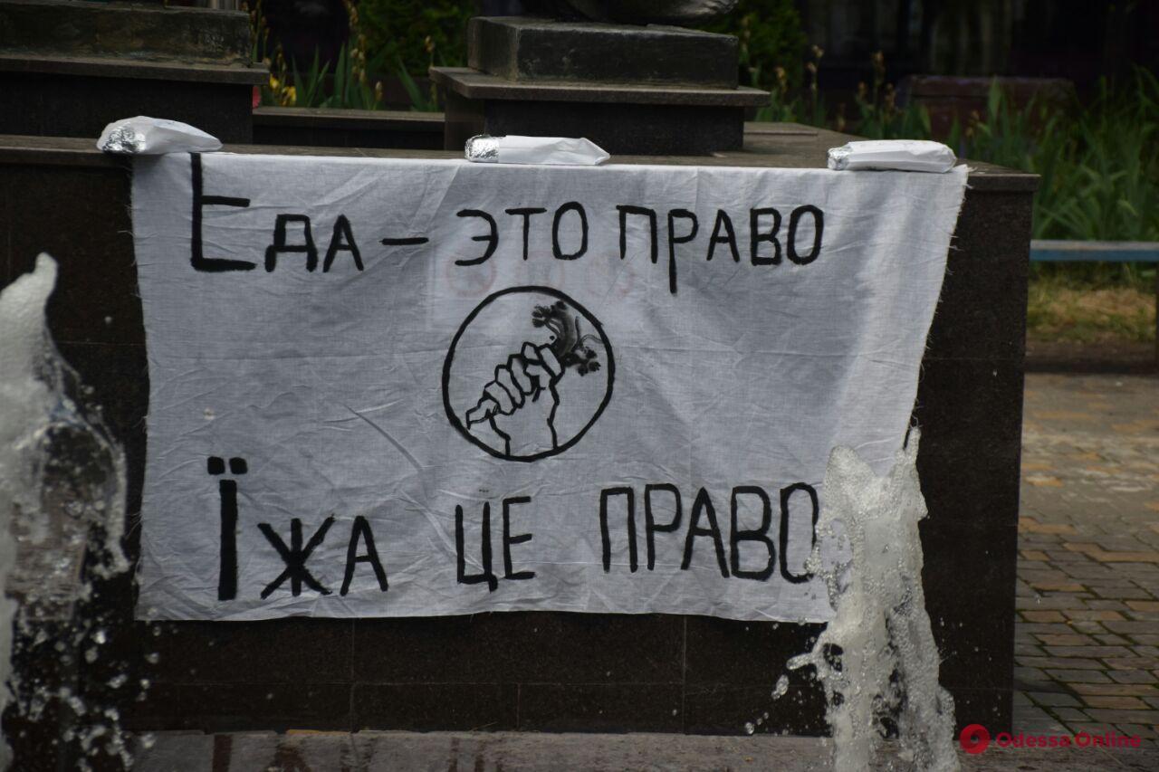 В Одессе активисты раздают бездомным вегетарианскую шаурму (фото)