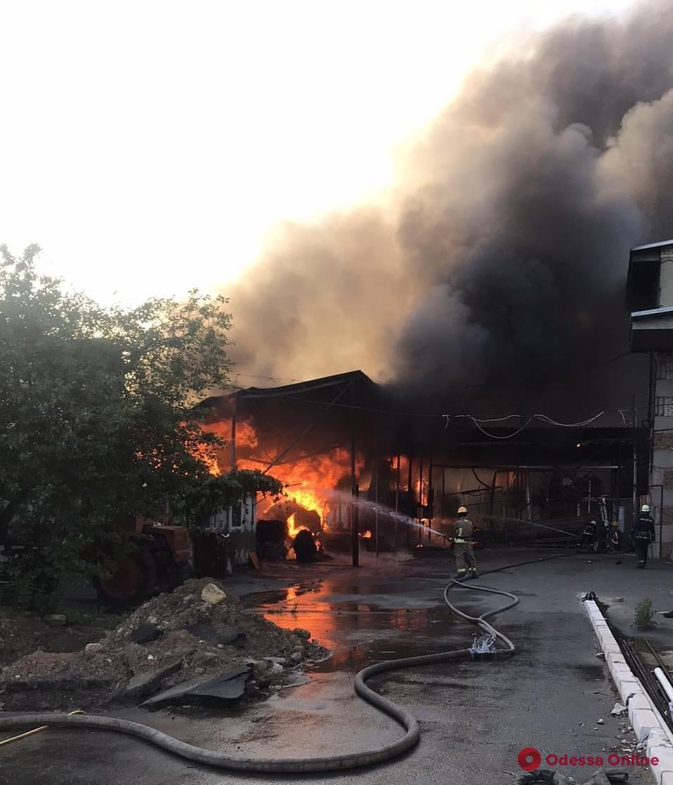 Одесская область: в Маяках тушат масштабный пожар (фото)