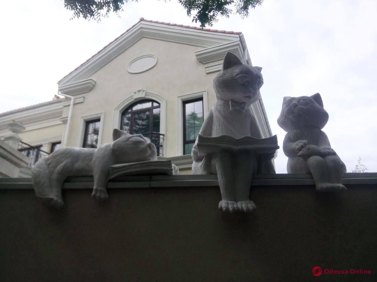 На Французском бульваре «поселились» читающие коты
