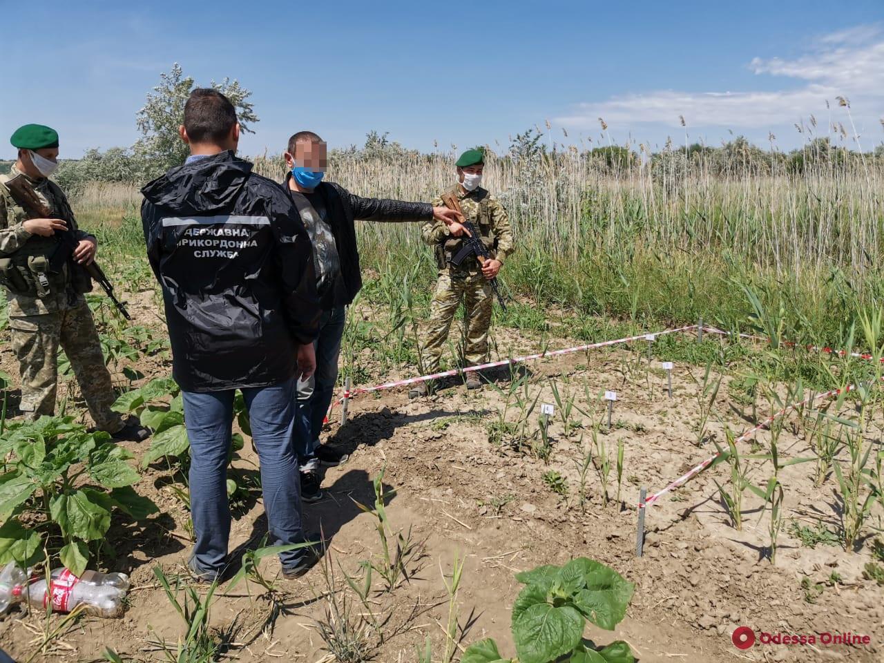 Вел девушку на смотрины: в Одесской области задержали парочку молдавских нарушителей границы