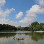 парк победы погода пруд