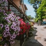 Молдаванка двор погода цветы