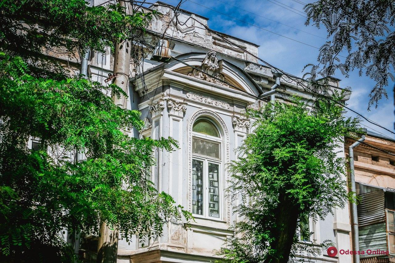 Тихая и зеленая: прогулка по Кузнечной улице (фоторепортаж)