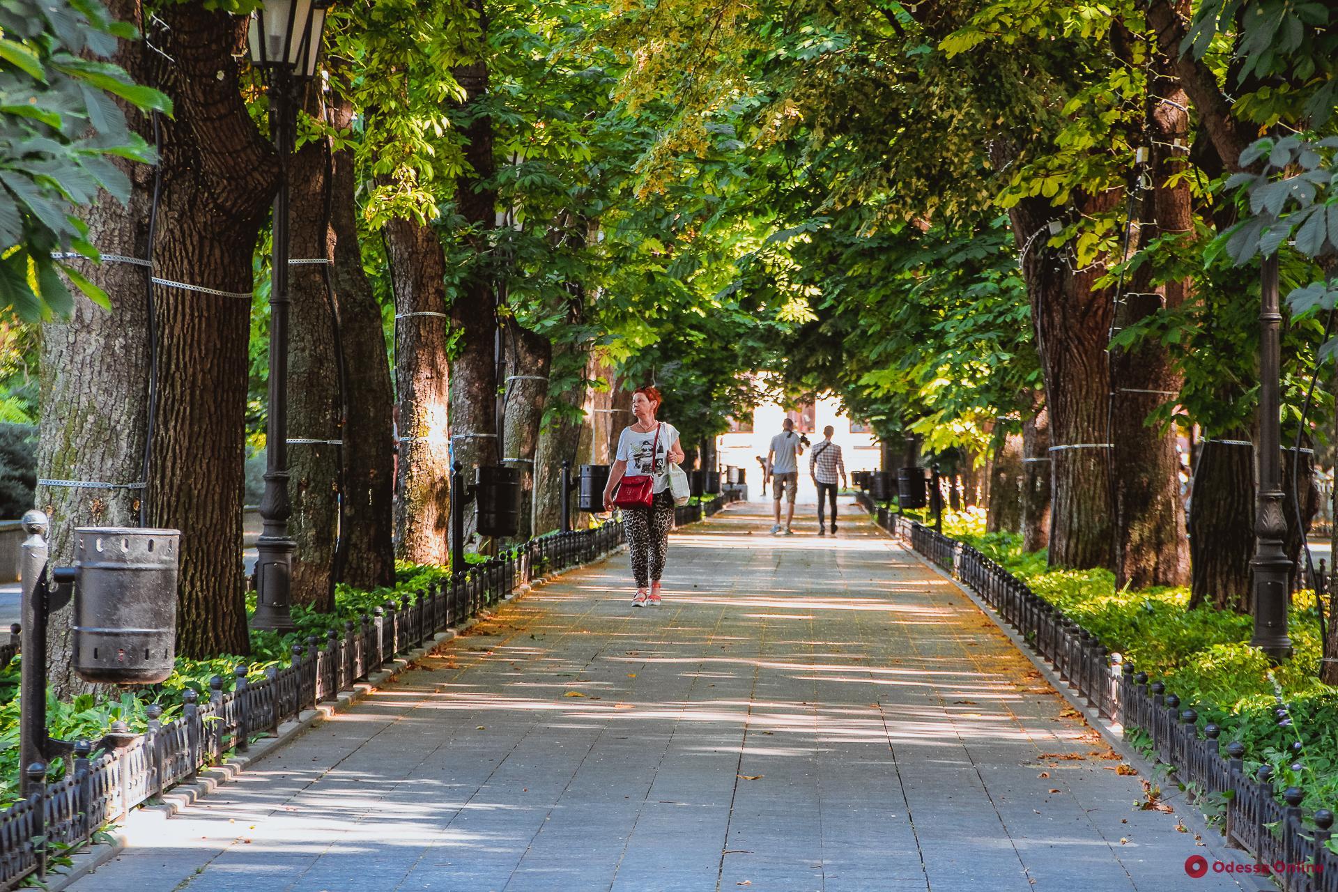 Солнечный фоторепортаж из центра Одессы