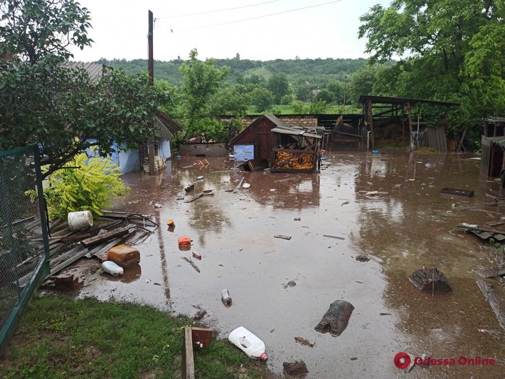 Ливень затопил село на севере Одесской области — людей и домашний скот эвакуируют (фото)