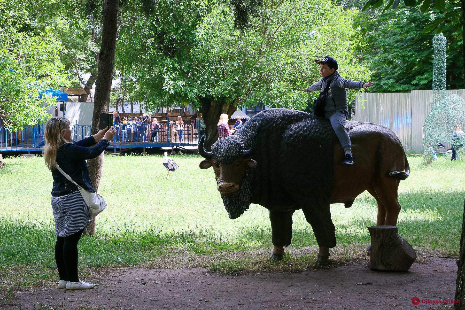 День защиты детей в Одесском зоопарке: аншлаг даже без традиционного праздника (фоторепортаж)