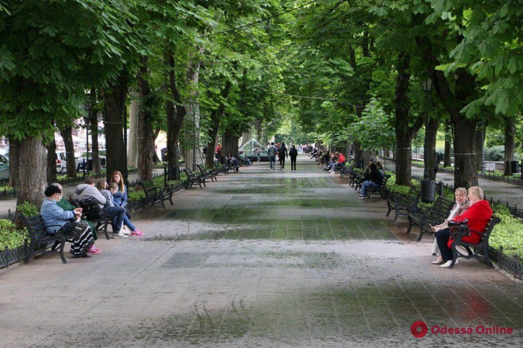 Июнь в Одессе: нелетняя прохлада и грибной дождик (фоторепортаж)