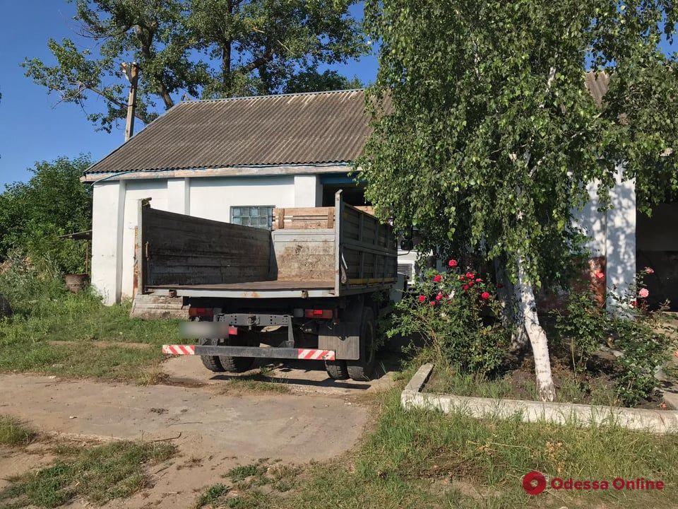 В Одесской области коммунальщик при подрезке дерева упал и разбил в голову — мужчина в коме
