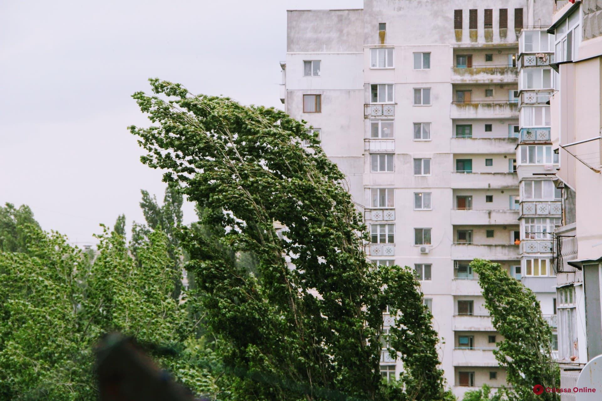 Дождь, гроза и шквальный ветер: в Одессе объявили штормовое предупреждение
