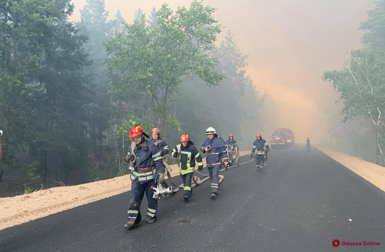 Масштабный лесной пожар в Луганской области уничтожил 110 домов — один человек погиб