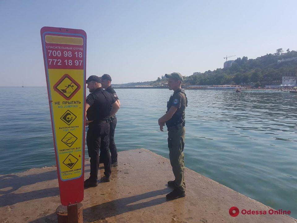 В Одессе спасают дельфинов, оказавшихся в ловушке на пляже (обновлено)