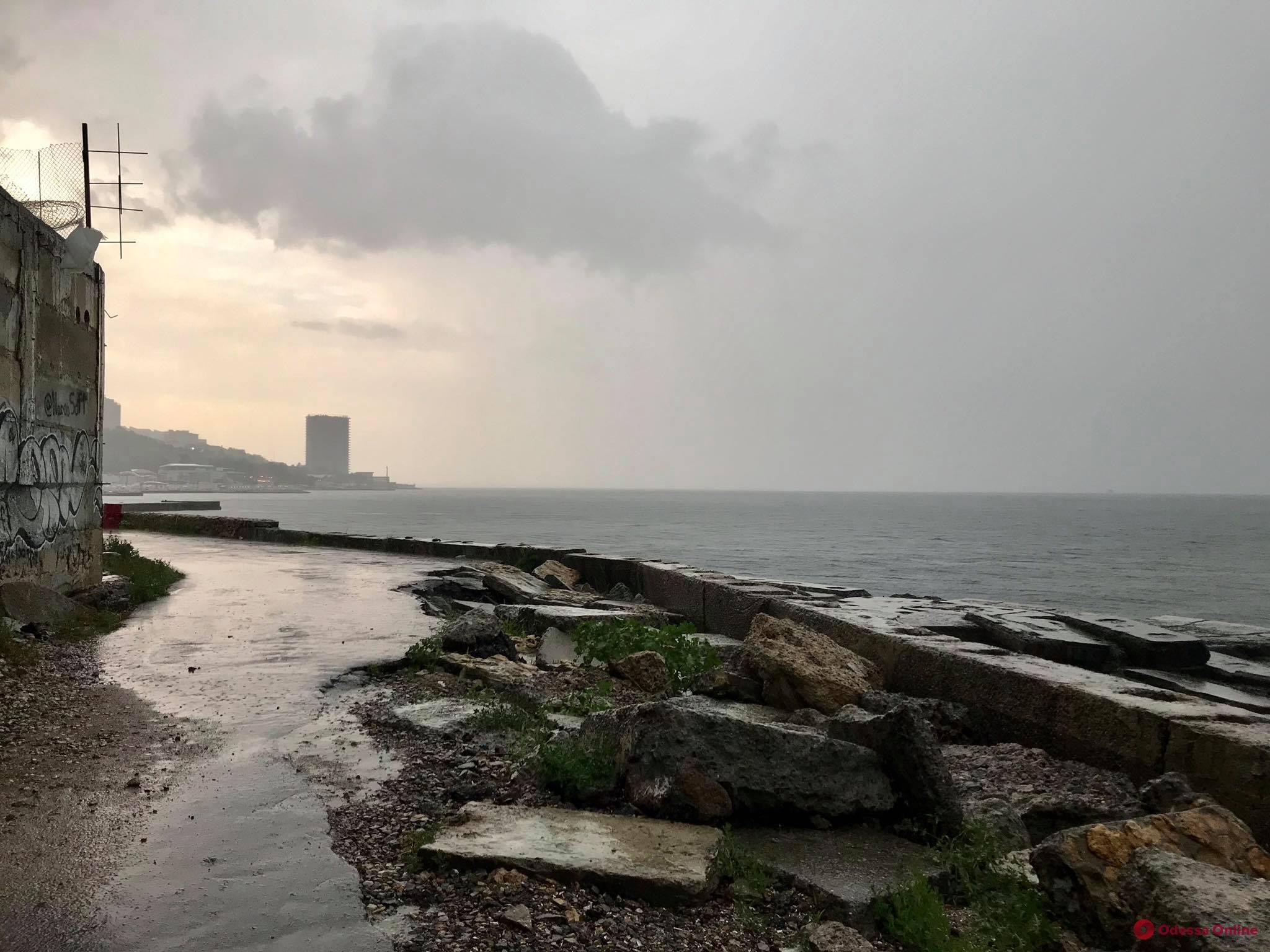 Мокро, но весело — дождливый фоторепортаж из Аркадии