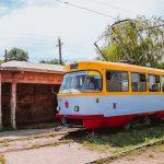 камышовый трамвай 20