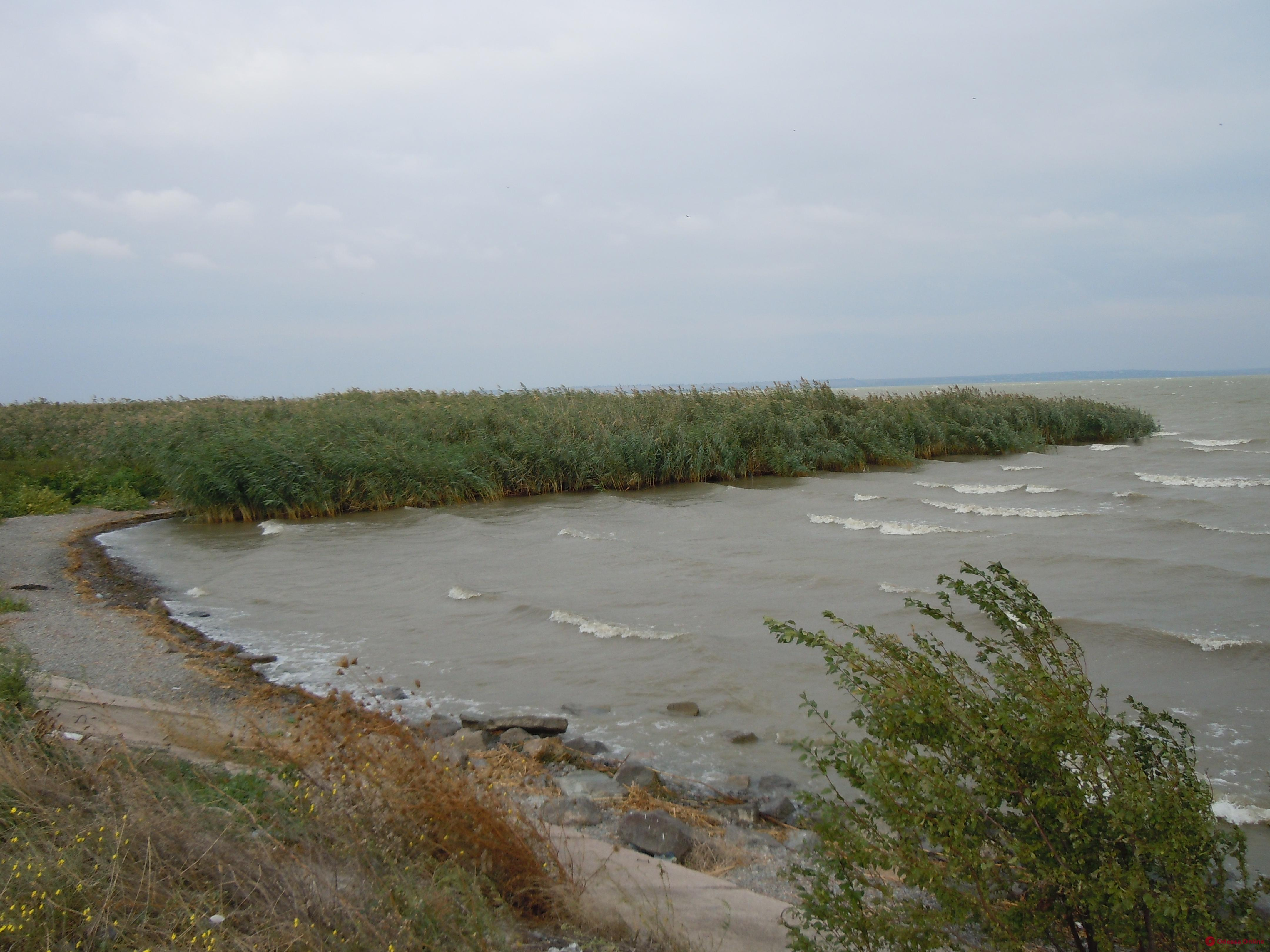 Не могли выбраться на берег: в Одесской области на озере спасли трех подростков