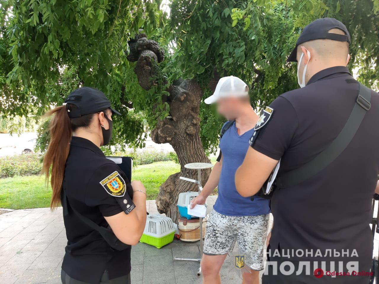 В Одессе полицейские составили более двадцати протоколов на эксплуататоров животных