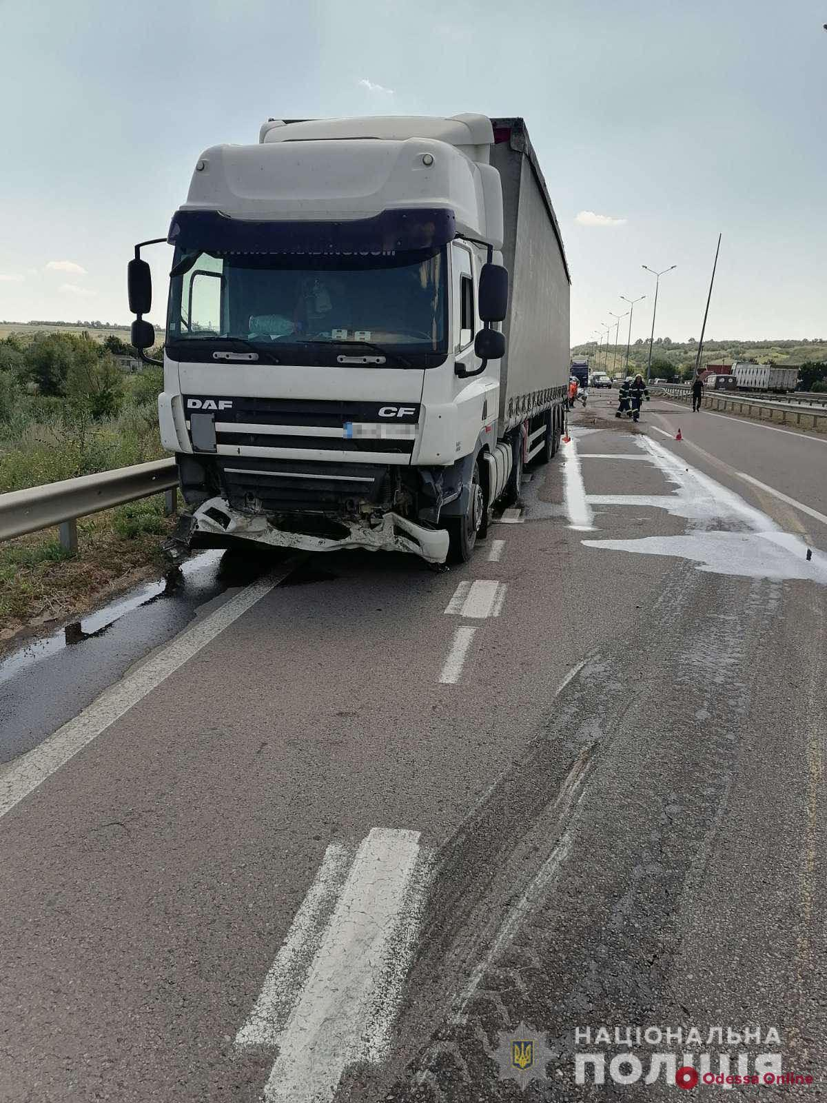 На трассе Киев-Одесса грузовик сбил насмерть двух мужчин