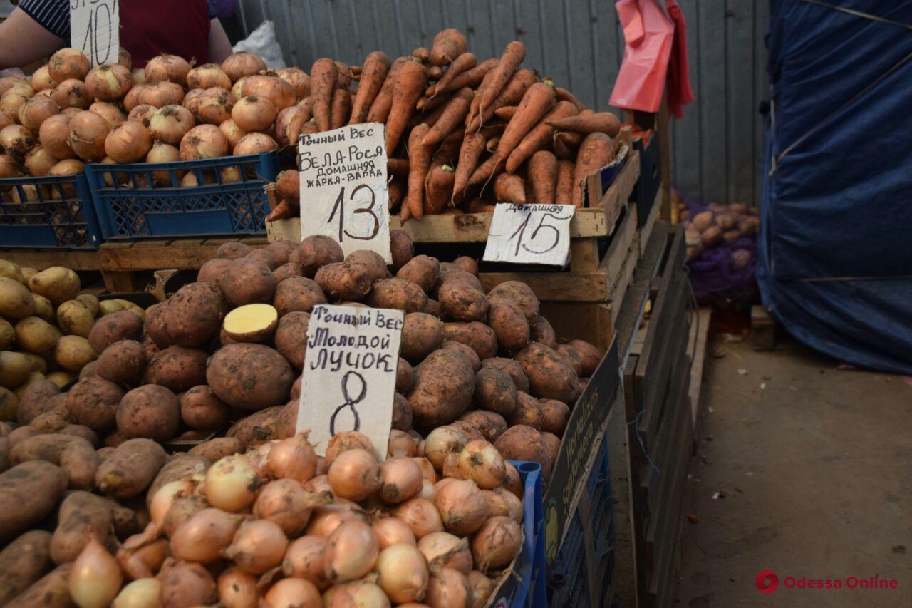 Виноград, вишня и дыня: воскресные цены на одесском «Привозе»