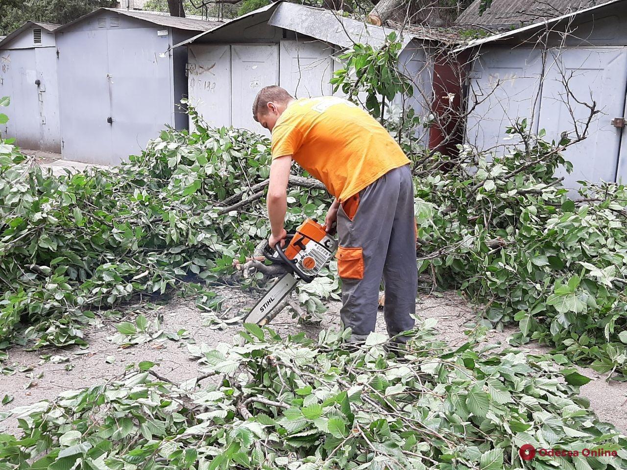 В Одессе повалены более сотни деревьев