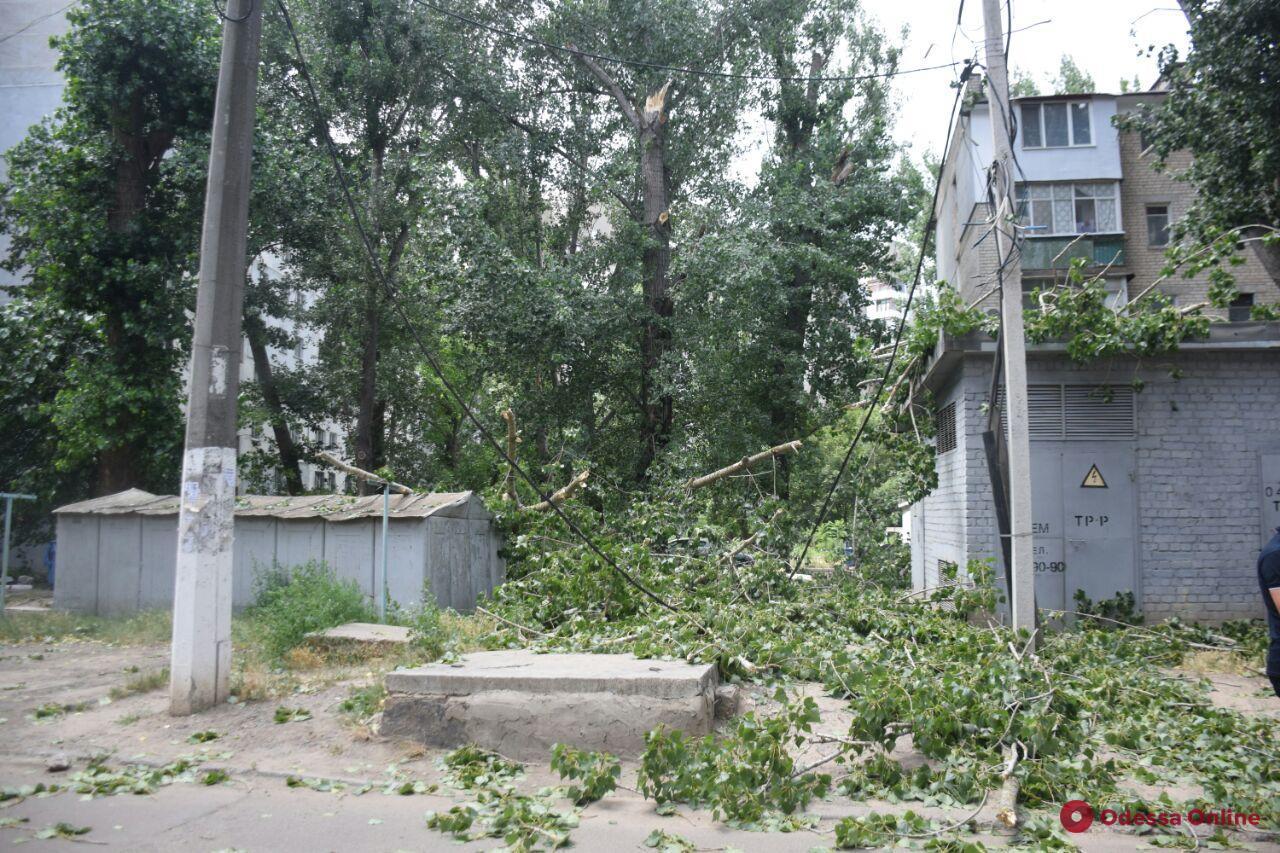 На поселке Котовского крупная ветка помяла авто и оборвала провода (фото)