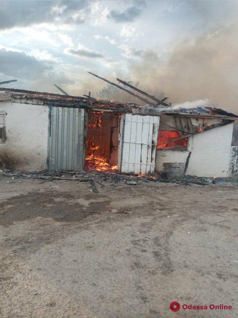 В Одесской области сгорел свинарник – животные погибли