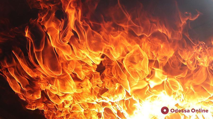 Ночью в Черноморске тушили пожар на бывшей базе отдыха (видео)
