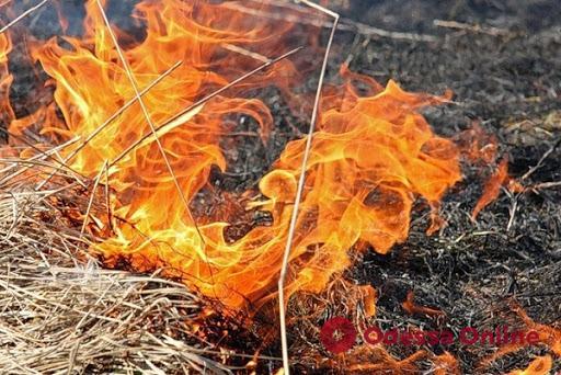 На склонах в районе пляжа «Калетон» горела сухая трава