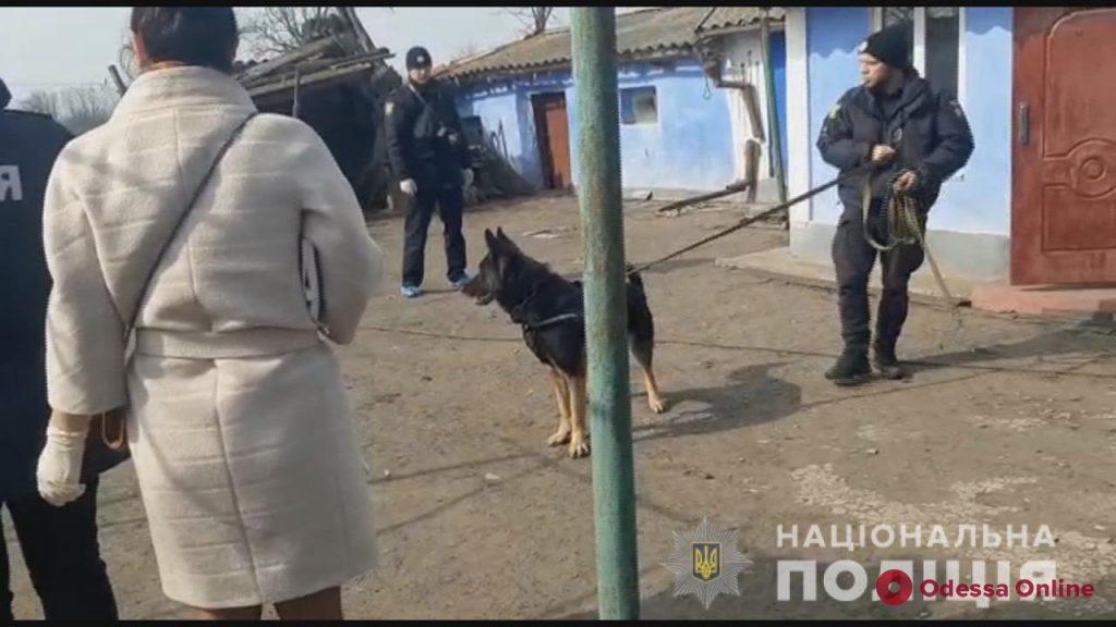 В Одесской области задержали убийцу пенсионерки